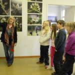 Laaksolan näyttelyssä esitellään Suomen luontoa