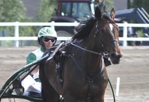 Timo Leivo ja Jaqueline Mon Ami näyttävät kulkevan lähes voitosta voittoon. Kuva Rauli Ala-Karvia