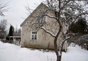 Viialassa syntynyt Niina Tapojärvi osti aviomiehensä kanssa puutalon Toijalan Pätsiniemestä keväällä 2014. Puutalon remonttia käsittelevä Nelliinan puutalo -blogi nousi heti ilmestyttyään suomalaisten blogien kiinnostavimpaan kärkeen.