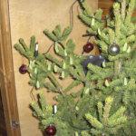 Joulukuusi kasvatti omat koristeet