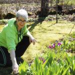 Puutarhahulluus tuli Pia Hakalalle mummun perintönä