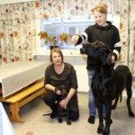Kylmäkosken 4H-yhdistys järjestää koiranhoitokurssin
