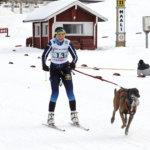 Satu Similä ja Tessu voittivat hopeaa valjakkohiihdon SM-kisoissa