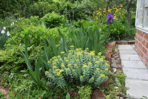 Kati Koivula, puutarha