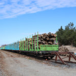 Puuterminaalin ratasuunnitelma tulossa nähtäville – Täysperävaununtien rakentamista kilpailutetaan