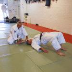 Shodokan aikido on harmoniaa ja koordinoituja liikkeitä