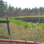 Suomeen koko maan kattava vaellusreitti