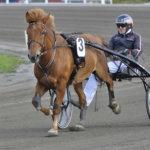 Patrikin Vili ohjastettiin perjantaina uransa seitsemännessä kilpailussa ensimmäiseen voittoonsa
