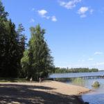 Sinileviä oli Pirkanmaalla keskimääräistä vähemmän kesällä 2020 – Seuranta päättynyt tältä vuodelta