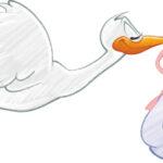 Vauvauutisia: Akaaseen syntyi tyttöjä