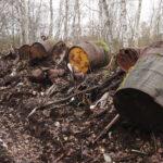 40000 kuutiota jätettä! – Vanha tehdaskaatopaikka pysäytti sähköyhtiön työt Viialassa: UPM:n mukaan tynnyreiden sisältöä ei ole analysoitu mutta pohjavettä on tutkittu