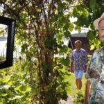 Suomen kauneimmalle mökille kurvasi autolasteittain vieraita – René Wilénin ja Martti Uotilan puutarhan avoimet ovet oli menestys